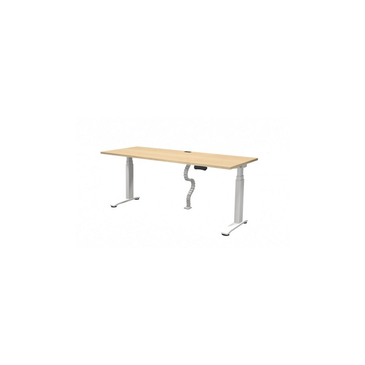 Wire Management shown with Apollo Adjustable Height Desk